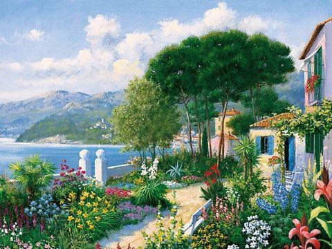 Картина раскраска по номерам 50x65 Природа и много цветов