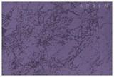 Kalahari Lilac