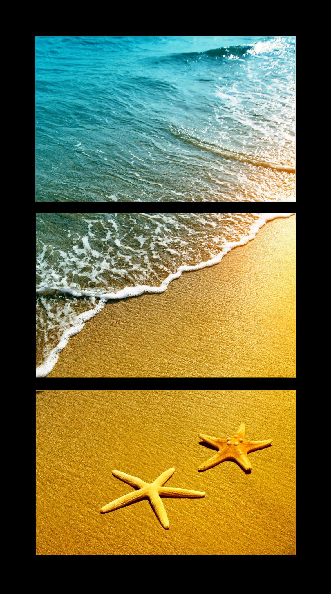 """Природа Модульная картина """"Морские звезды"""" М1044_M_загибы_47х90.png"""