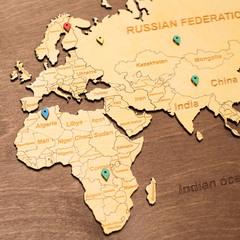 Карта Мира из дерева в овальной рамке Brown фото 4