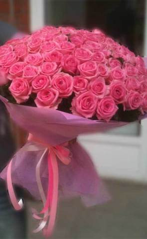 101 розовая роза Aqua/Candy 60 см