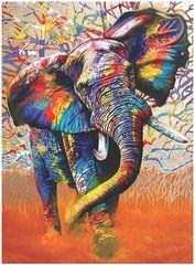 Картина раскраска по номерам 40x50 Разноцветный слон