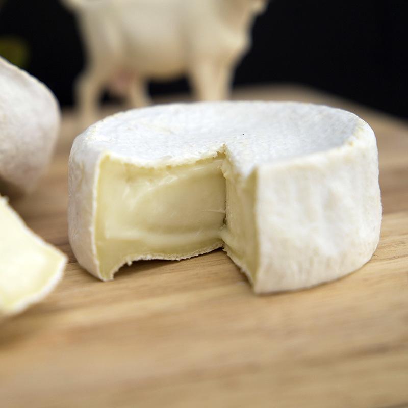 Фотография Козий сыр мягкий «Камамбер» / 100 гр / РАСПРОДАЖА купить в магазине Афлора