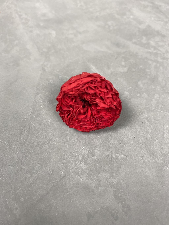 Роза пионовидная красная d=2-3 см