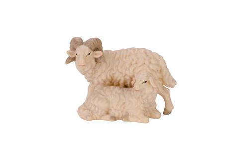 Овца с бараном