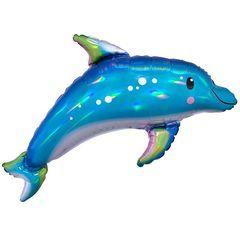 А Дельфин Перламутр, 29