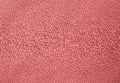 Искусственная кожа Domus (Домус) berry