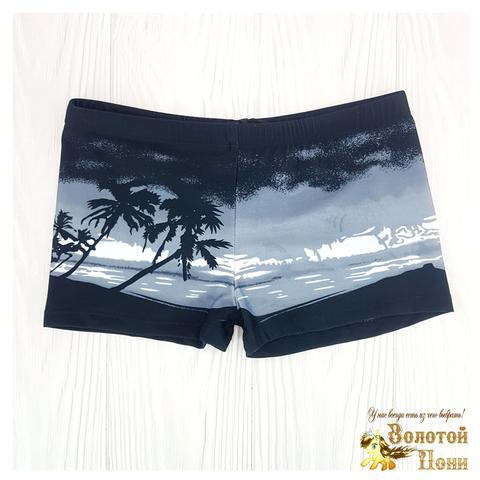 Плавки пляжные мальчику (5-13) 210601-СL21094