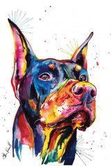 Картина раскраска по номерам 40x50 Разноцветный доберман