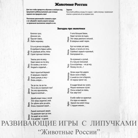 РАЗВИВАЮЩИЕ ИГРЫ С ЛИПУЧКАМИ «Животные России»