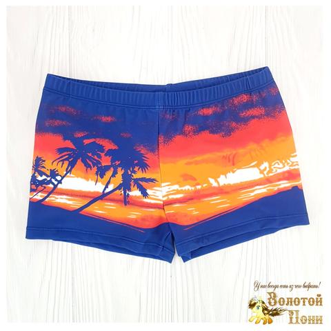 Плавки пляжные мальчику (5-13) 210601-СL21095