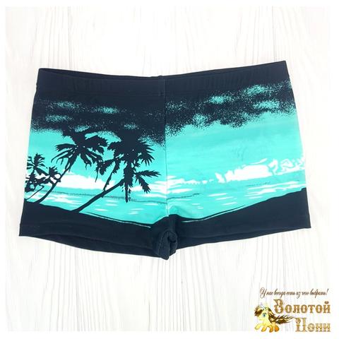 Плавки пляжные мальчику (5-13) 210601-СL21096