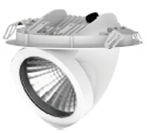 светильник точечный D001-COB4-25W