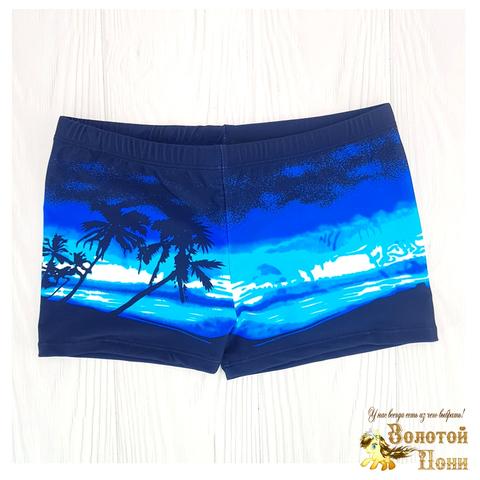 Плавки пляжные мальчику (5-13) 210601-СL21097