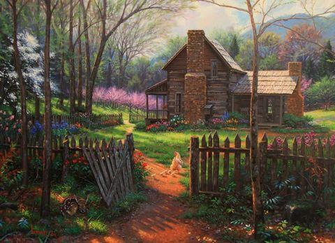 Картина раскраска по номерам 50x65 Курица с циплятами у дома