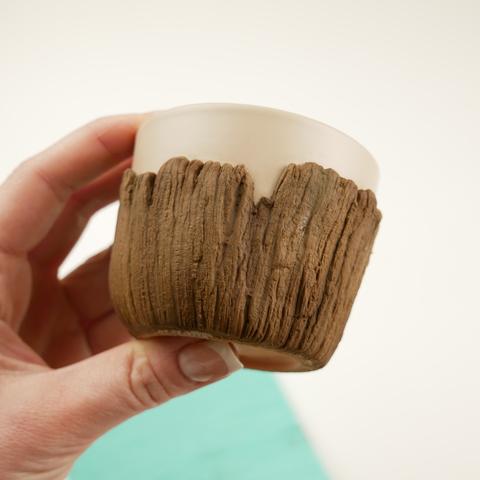 Текстура кора дерева