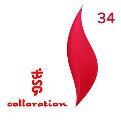 BSG Colloration, №34 Ярко красно-розовый