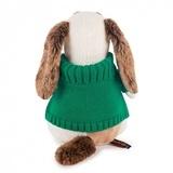 Пес Бартоломей в зеленом свитере