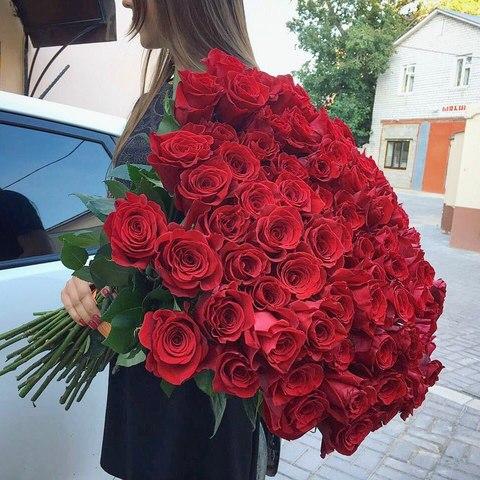 101 красная эквадорская роза 50 см #1454