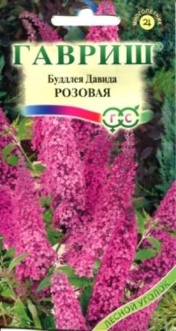 Семена Буддлея Давида розовая, Мнг