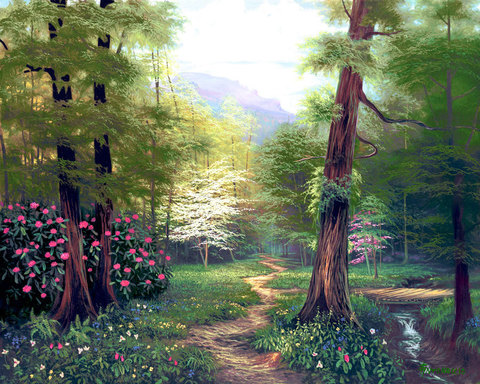 Картина раскраска по номерам 50x65 Путешествие по лесу