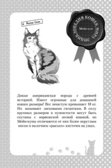Нахальный принц и кошка-несмеяна. Том 4