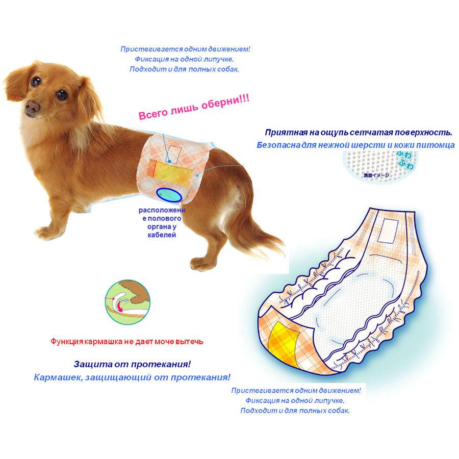 705 - Интеллектуальные пояса-подгузники для собак