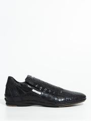 Кожаные кроссовки Alexander Hotto 52402с с принтом