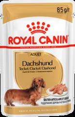 Паштет для взрослых собак породы такса, Royal Canin Dashshund Adult