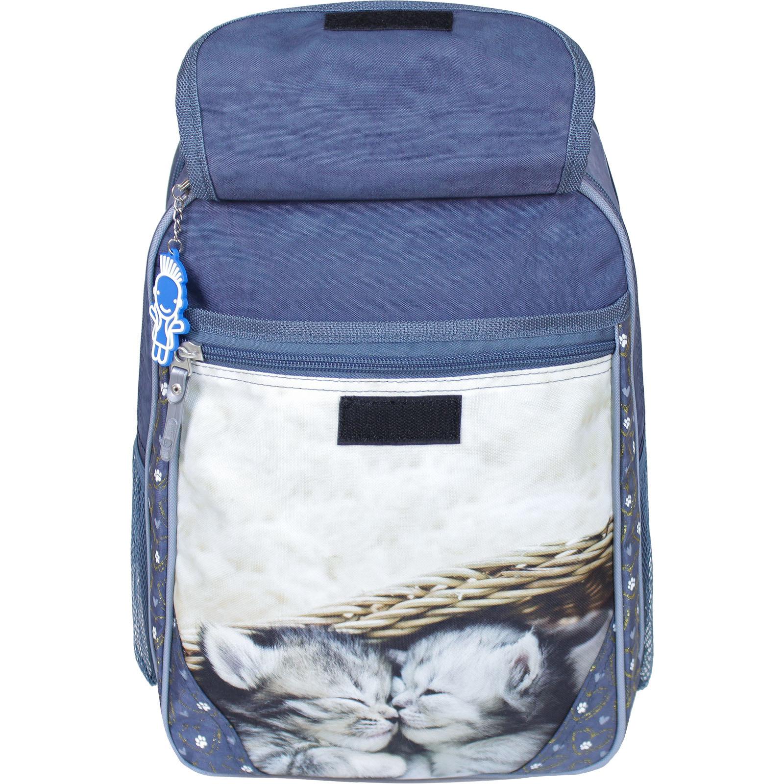 Рюкзак школьный Bagland Отличник 20 л. 321 сірий 165к (0058070)