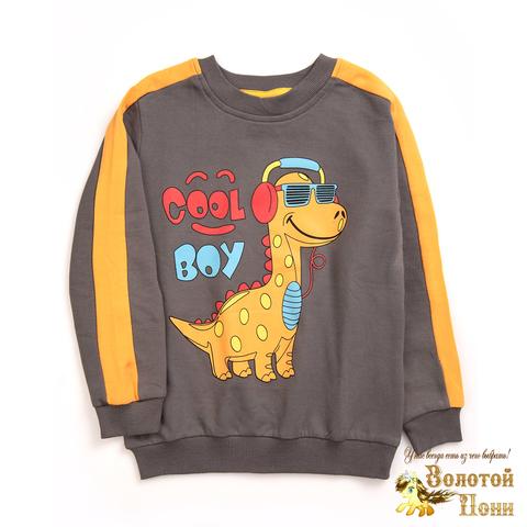 Джемпер хлопок мальчику (2-5) 210114-MD7074