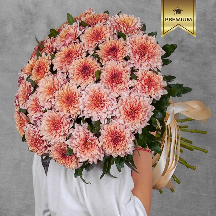 Купить хризантемы шар Пип Салмон букет в Перми