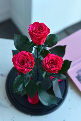 Роза Трио Оптом Выс*Диам*Бутон (32*22*3х7см) Цвет фуксия