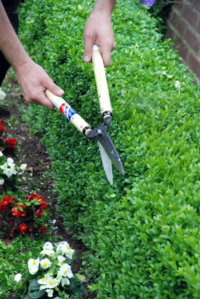 Ножницы садовые для живой изгороди Okatsune 217