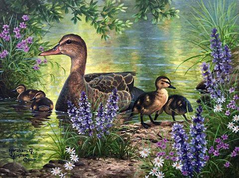 Картина раскраска по номерам 50x65 Утка с утятами