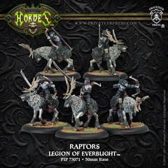 Nyss Raptors BOX