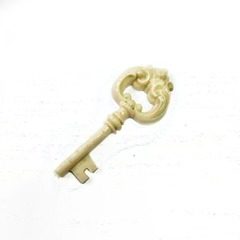 0987 Молд силиконовый. Ключ.