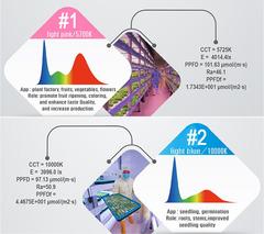 Линейная cветодиодная фитолампа 0,6м 18Вт для цветов и растений