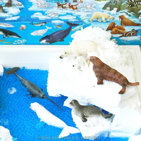 НАБОР «Обитатели льдов»