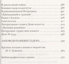 Гумилев без глянца. Сост. Фокин П.Е.
