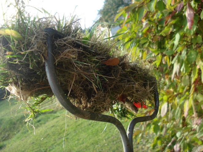 Грабли садовые DeWit