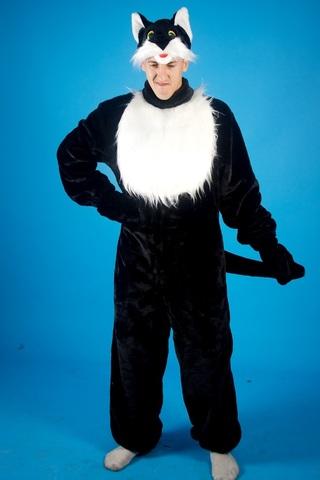 Карнавальный костюм Кота 1