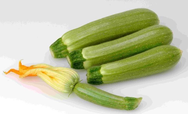 Кабачок Суха F1 семена кабачка (Sakata / Саката) Суха_F1_семена_овощей_оптом.jpg