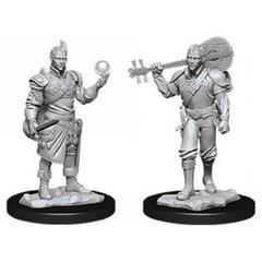 D&D Nolzur's Marvelous Miniatures - Male Half-Elf Bard
