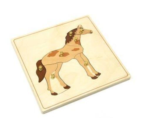 Строение лошади пазл