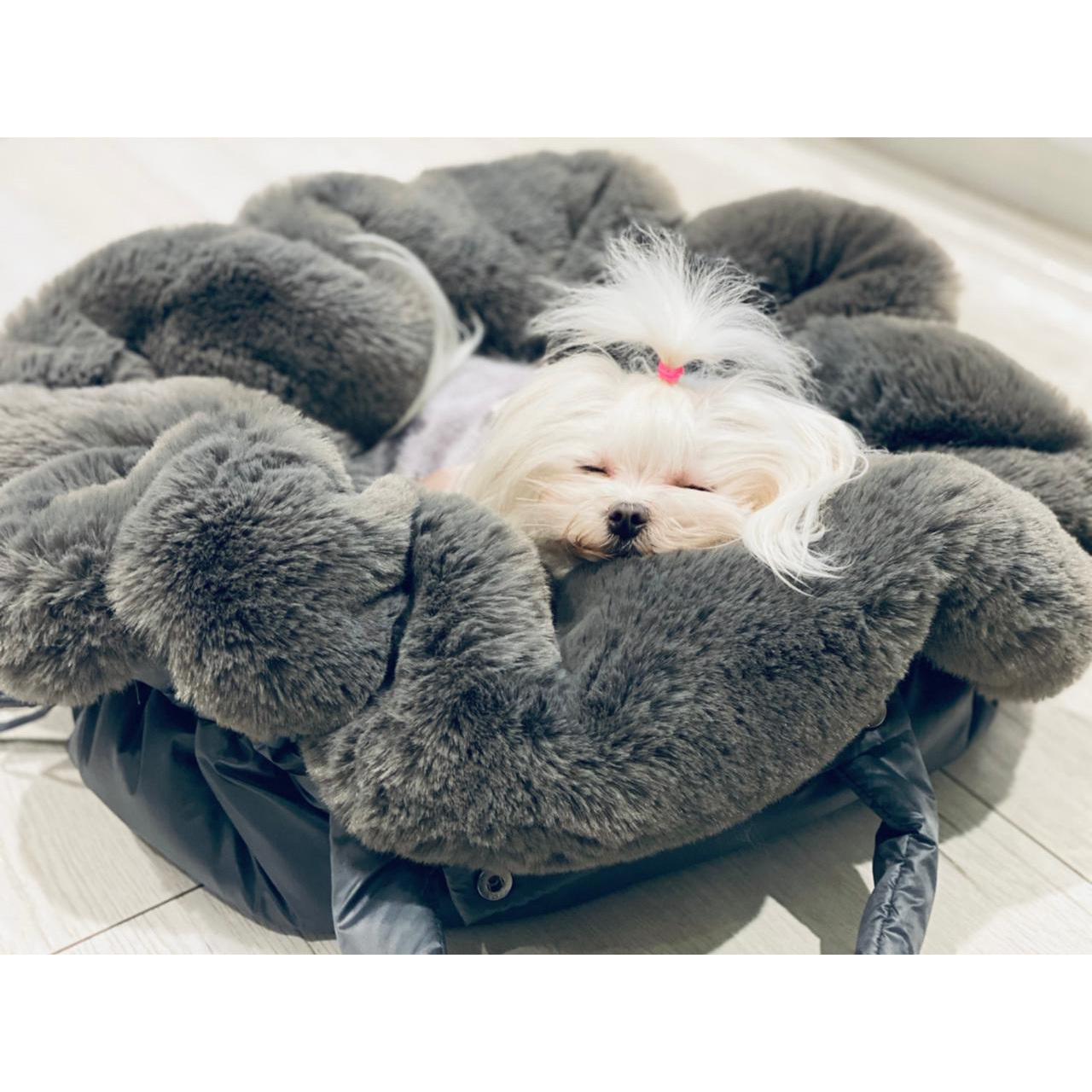 меховые сумки для собак