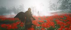 Призрак Цусимы Режиссёрская версия (PS4, русская версия)