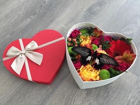Цветы и бабочка в коробке  #28564
