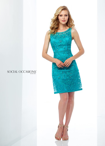 Social Occasions 118871