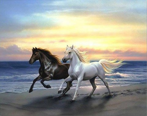 Алмазная Мозаика 30x40 Черный и белый конь скачут по побережью